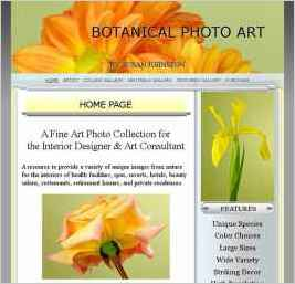 Botanical Photo Art