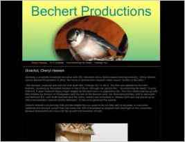 Bechert Productions