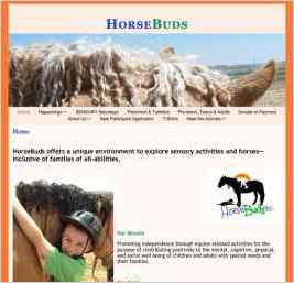 HorseBuds Therapeutic Riding Center