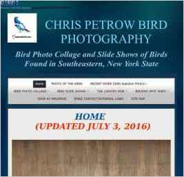 Chris Petrow Bird Photography